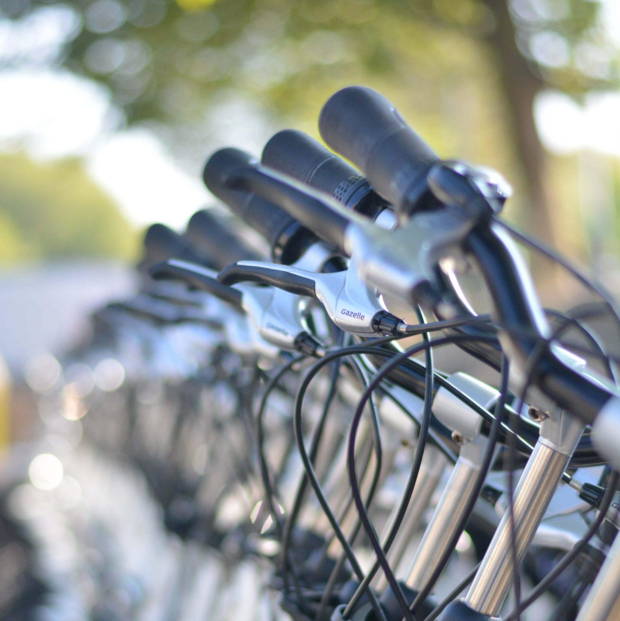 rowery Szczawnica